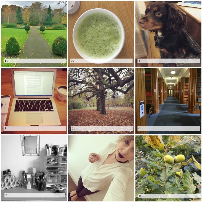 BeFunky Collage_248.jpg